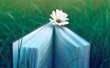 মাসুদ আল মামুনের দুটি কবিতা