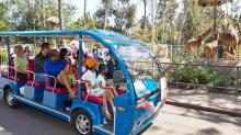 ভ্রমণকে আরামদায়ক করুন ৮ কৌশলে