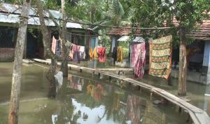 টানা বর্ষণে সাতক্ষীরার তালা উপজেলায় ব্যাপক জলাবদ্ধতার সৃষ্টি হয়েছে। ছবি- বিবার্তা২৪.নেট
