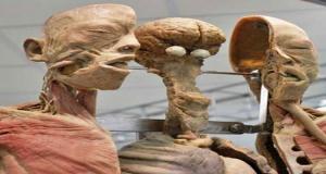 থাইল্যান্ডের ব্যাংককের 'সিরিরাজ মেডিকেল মিউজিয়াম'। এই জাদুঘরটি 'মৃত্যু জাদুঘর' হিসেবে পরিচিত। জাদুঘরটির প্রধান উদ্দেশ্যে হচ্ছে, রোগ শণাক্তে ডাক্তারী গবেষণার জন্য মৃতদেহ নমুনা হিসেবে সংগ্রহ করে রেখে দেয়া। এটি জনসাধারণের জন্য উন্মুক্ত। এখানে রোগে আক্রান্ত মৃতদেহ, খুন হওয়া মৃতদেহসহ বিভিন্ন অঙ্গপ্রত্যঙ্গ দেখার করা সুযোগ রয়েছে।