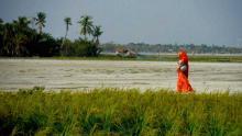 প্রামাণ্যচলচ্চিত্র 'ঝলমলিয়া' এখন বিশ্বের শহরে শহরে