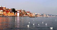 'দূষিত গঙ্গাজলে সারবে টিবি-কলেরা'